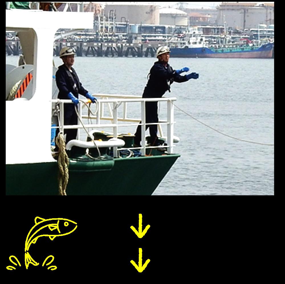 入港・着桟4